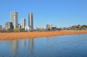 el templo Benten-do en el medio del lago del parque de Ueno