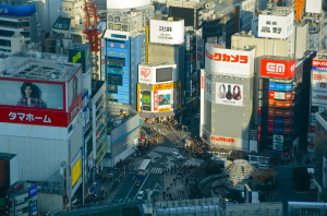 vista de Shinjuku de lo alto del Museo Sompo Seiji Togo