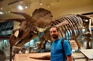 El esqueleto de un dinosaurio en el museo de historia natural (el dinosaurio es el que no lleva camiseta)