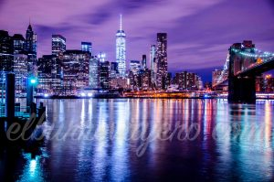 new york elburroviajero